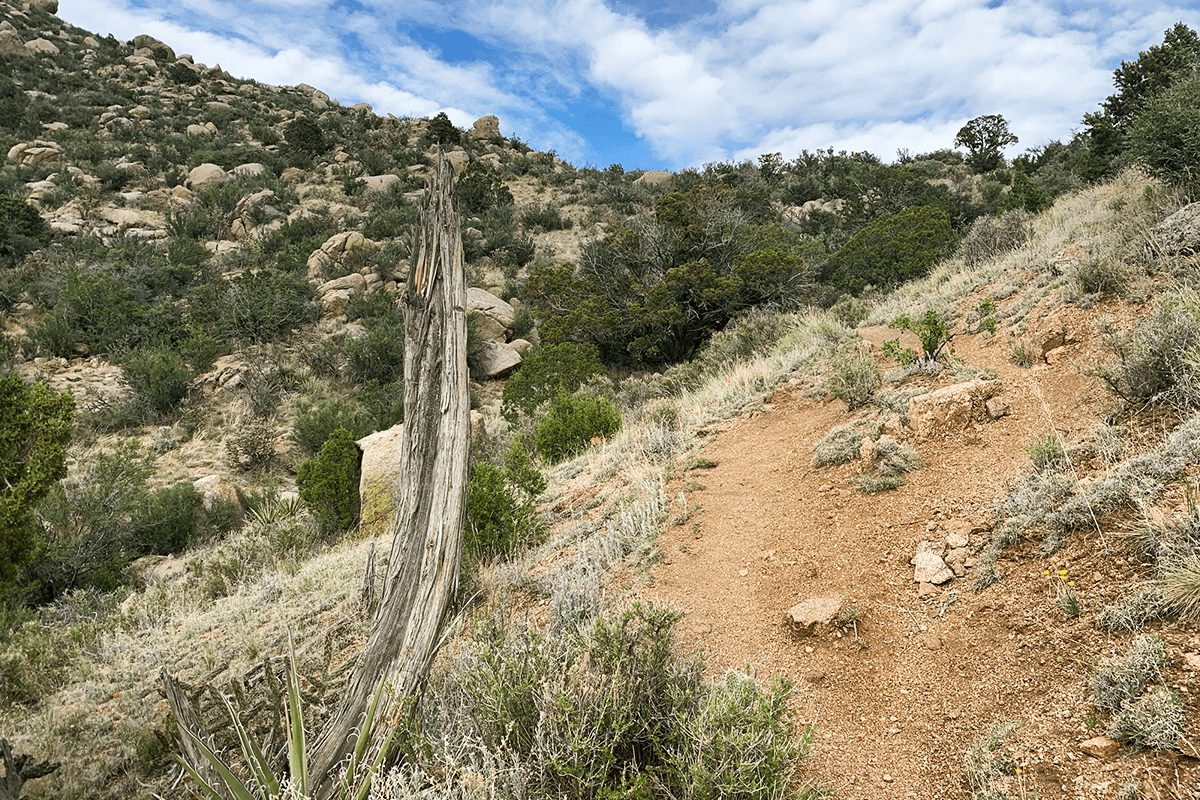 Eye of the Sandias Loop Trail